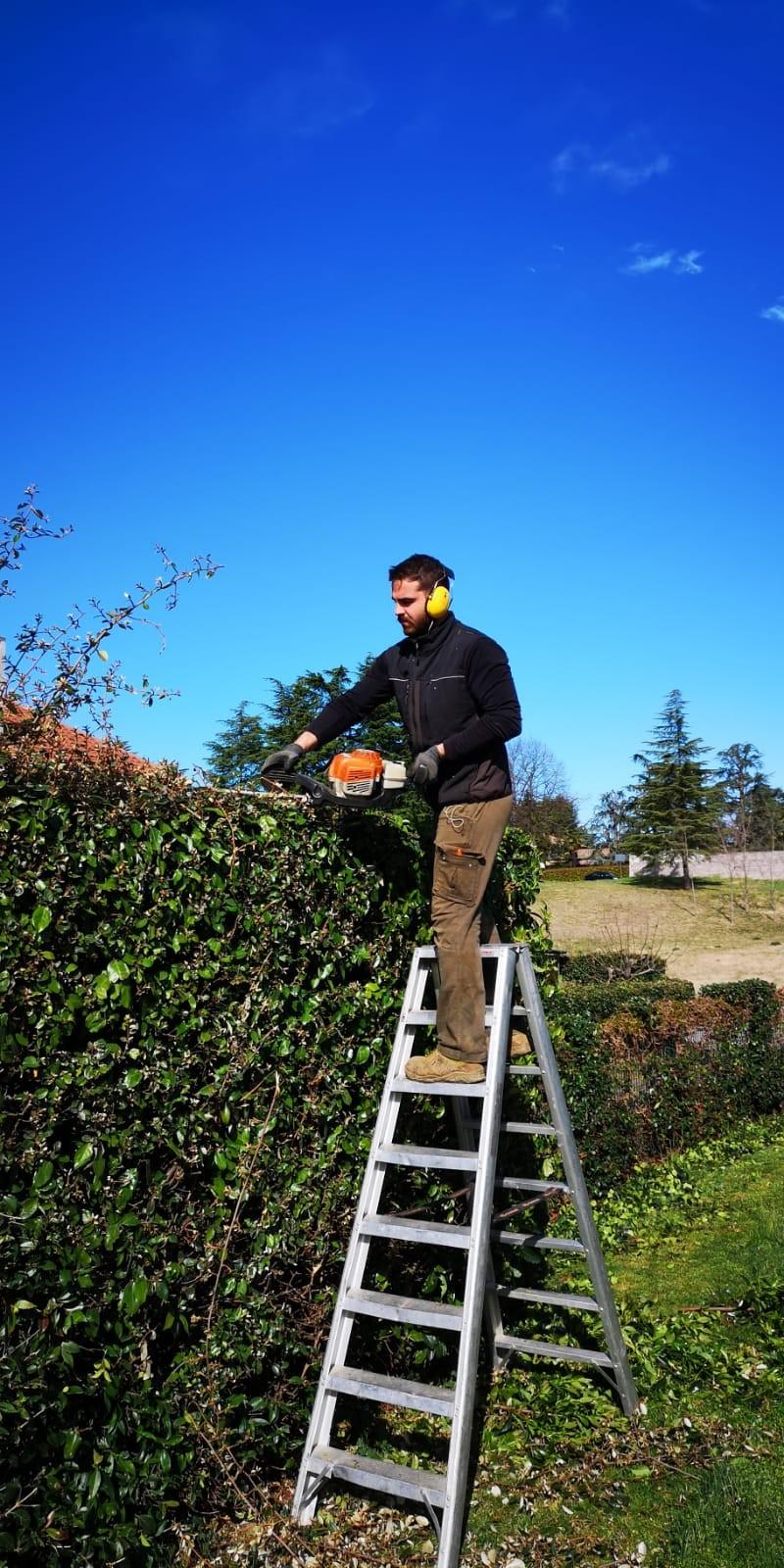 ditte di giardinaggio udine